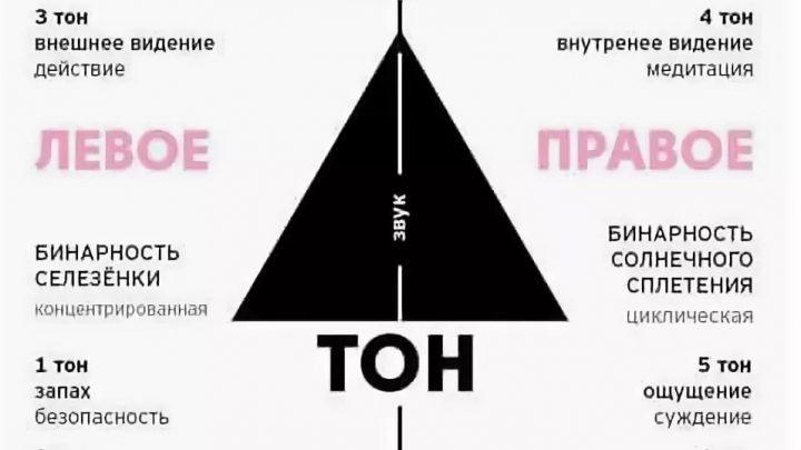 Левый, Правый Ум в Дизайне Человека